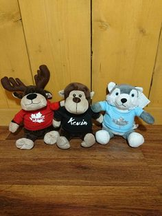 Check out this item in my Etsy shop https://www.etsy.com/ca/listing/522847187/personalized-stuffed-animals-with-name