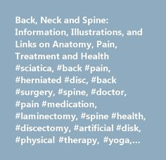 Back, Neck and Spine: Information, Illustrations, and Links on Anatomy, Pain, Treatment and Health #sciatica, #back #pain, #herniated #disc, #back #surgery, #spine, #doctor, #pain #medication, #laminectomy, #spine #health, #discectomy, #artificial #disk, #physical #therapy, #yoga, #vicodin, #neck #pain, #oxycontin, #piriformis #syndrome, #spinal #cord, #traction, #spine #fusion, #pinched #nerves, #epidural, #nerve #block, #discograms, #spine #ergonomics…