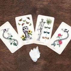 The Oracle of Oddities | Everyday Magic