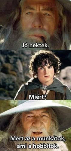 Text Memes, Having A Bad Day, Lotr, Funny Cute, The Hobbit, Vape, I Laughed, Jokes, Tolkien