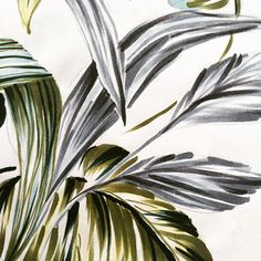 Let's get leafy #tropicals #palms #leaves #printdesign #drawings #penandpaper #hah