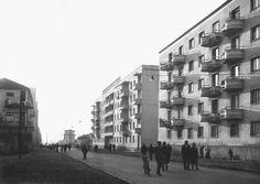 Rruga M.Shyri,1964, pare nga kendi i parkut Rinia.Perballe nderteses ne mes te fotos kam banuar deri ne mes te viteve 80'.Ky eshte fillimi i zbatimit te planit te me siperm.