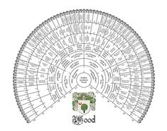 Download a Free Genealogy Family Tree Template / Chart ...