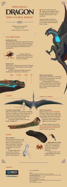 There have been many dragons featured in TV and movies, but few interpretations have really tried to explain just how a dragon could exist or even function. After careful research and observation of the natural world, we have put together this graphic in an attempt to break down the mythical beast.  TV and movies have featured many dragons, yet few interpretations have attempted to explain just how a dragon could function or even exist at all. Through careful research and observation of our…