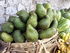 Corosal a sweet fruit in Haiti. Known to kill certain types of cancer cells.