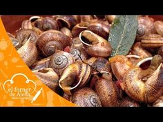 Caracoles picantes - YouTube