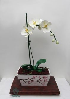Orchid flowerpot cake - hand painted flowerpot with sugar made orchids. Cake by Cake My Day Cape Town