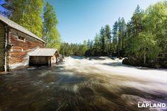 The power of rapids. Myllykoski Mill at #Oulanka national park #Kuusamo