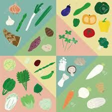 """Résultat de recherche d'images pour """"classification légumes"""""""