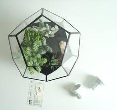 Pentagon Terrarium #smallgarden #handcraftedglass