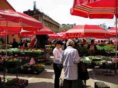 market in Zagreb, Croatia