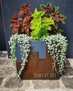 kertépítés, kerttervezés Planter Pots, Garden, Garten, Lawn And Garden, Gardens, Gardening, Outdoor, Yard, Tuin