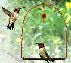 """Hummingbird Swing"