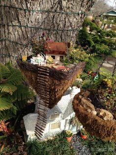 Jardines de Hadas 2 / Fairy gardens 2