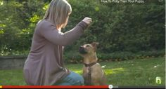 How to Train a Puppy to Sit and Stay – http://www.totallydoggytraining.com