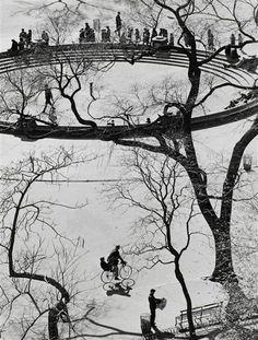 André Kertész,Washington Square, New York, 1959