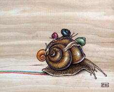 Snail Back Ride by Fay Helger