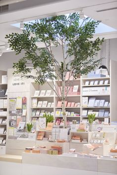 Home & Garden | Store Tour: Kikki.K Studio Is Your Newest Reason to Go to Melbourne | POPSUGAR Home Australia Photo 14