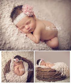 Little Rosebuds Photography