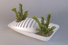 fluidity kitchen planter