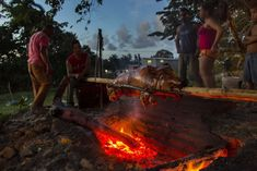 The Rodriguez Osorio family slow-roasts a pig over a charcoal fire for their New Year's Eve dinner in Campo Florido, Cuba. New Year's Eve Around The World, Celebration Around The World, New Year Celebration, Around The Worlds, New Years Eve Traditions, New Years Eve Dinner, Pig Roast, Far Away, Havana Cuba