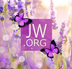 JW.org. Such a great, helpful website for anyone. Especially helpful for problems today, like grief.