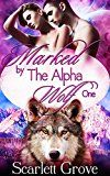 Free Kindle Book -   Marked By The Alpha Wolf: Book One (Braving Darkness 1)