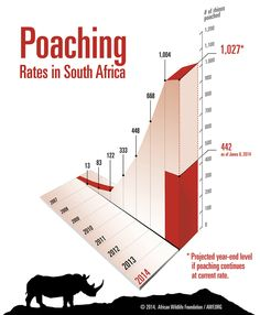 Vietnam's Ministry of Health Confims Rhino Horn Has No Medicinal Value - Rhino poaching graph | AWF