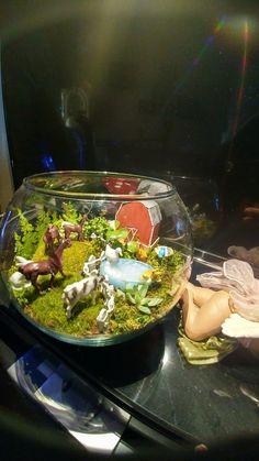 Aquarium, The Creation, Goldfish Bowl, Aquarium Fish Tank, Aquarius, Fish Tank