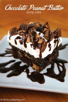 Chocolate-Peanut-Butter-Dump-Cake-Plated