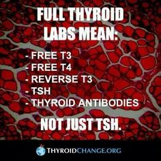 Everything there is to know about thyroid cancer Amen! SO important that you know ALL the numbers PLUS thyroid antibodies to assess thyroid function! Thyroid Test, Thyroid Issues, Thyroid Cancer, Thyroid Hormone, Thyroid Disease, Thyroid Problems, Thyroid Health, Autoimmune Disease, Thyroid Levels