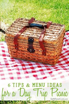 6 Tips and Menu Ideas for a Day Trip Picnic to the Zoo or park
