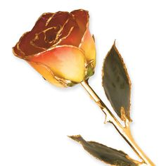 Lacquer dipped yellow red rose with gold trim measures long and is packaged in a lovely gift box. Fiance Birthday Gift, Birthday Gifts, Gold Gift Boxes, Green Rooms, Gold Dipped, Make A Gift, Flower Making, Beautiful Roses, Charm Jewelry