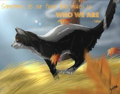 Talltail quote | Warrior Cats