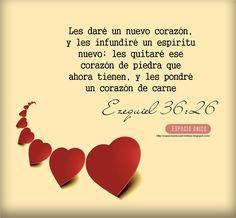 Ezequiel 36:26 Os daré corazón nuevo, y pondré espíritu nuevo dentro de vosotros; y quitaré de vuestra carne el corazón de piedra, y os daré un corazón de carne.♔