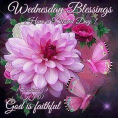 Wednesday Blessings good morning wednesday happy wednesday good morning wednesday wednesday blessings wednesday image quotes wednesday quotes and sayings Wednesday Greetings, Wednesday Hump Day, Blessed Wednesday, Happy Wednesday Quotes, Good Morning Wednesday, Have A Blessed Day, Good Morning Quotes, Happy Friday, Tuesday