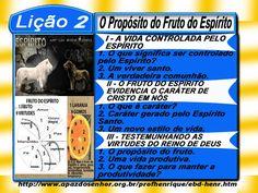 Comentário sobre a lição 02: O Propósito do Fruto do Espírito, elaborado pelo Ev. Luiz Henrique.