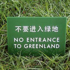chinglish small grass - Google Search