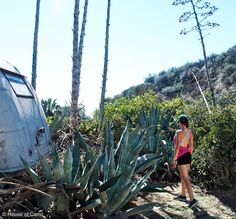 Hit by the Heat at Runyon Canyon | Love this top from Lululemon