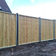 Discover the best Bamboo Screening. Buy your Trendline Bamboo Fence Panel 180 x 180 cm at Bamboo Import Europe. Privacy Fence Landscaping, Large Backyard Landscaping, Bamboo Wall, Bamboo Fence, Bamboo Fencing Ideas, Fence With Lattice Top, Bamboo House Design, Bamboo Building, Types Of Fences