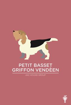 Petit Basset Griffon Vendeen | Bethany Ng