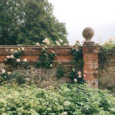 @peachykokoro Growing Strong, Princess Aesthetic, John Muir, Dream Garden, Garden Design, Scenery, Fantasy, Landscape, Inspiration