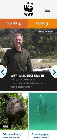 World Wildlife Fund Responsive Website on Mobile