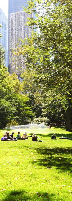 Central Park - New York  #newyork #centralpark #novaiorque #manhattan #bigapple #eua #usa #ny #nyc #phototakenbyme