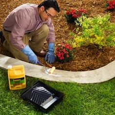Avery Avery DIY: Concrete Garden Edging Tutorial - edging is great because it keeps your landscaped beds & driveway neat. Concrete Garden Edging, Lawn Edging, Diy Concrete, Poured Concrete, Concrete Curbing, Driveway Edging, Flagstone Patio, Cement, Landscape Borders