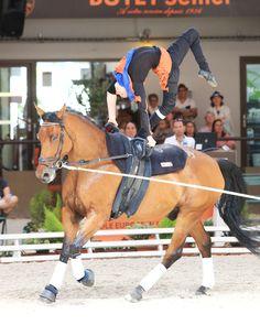Weltmeister Leclezio Lambert (MRI).  © Andrea Fuchshumer Le Mans, Trick Riding, Rock Hill, Vaulting, Tack, Gymnastics, Equestrian, Strong, English