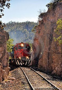 Train by Enrique Gomez, via Dreamstime