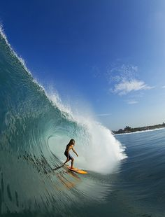 """Rob Machado........could not decide to put in my """"Yummy Stuff"""" board! LUV!"""