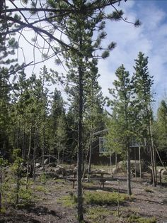 House vacation rental in Idaho Springs from VRBO.com! #vacation #rental #travel #vrbo $100-125 close to Winter Park.