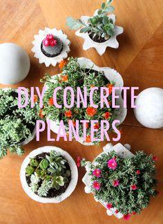 DIY Concrete Planters - How this looks so very fun